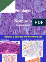 Aula de Neoplasias