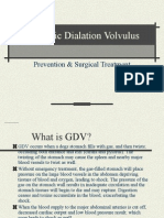 Gastric Dialation Volvulus