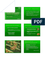 Estudio de Las Estudio de Las Interacciones Planta--hongos Patogénicos