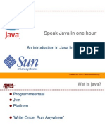 Speak Java in One Hour