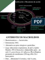 4.7. Macrolidos