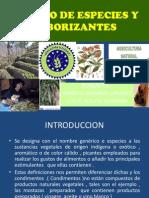 Cultivo de Especies y Saborizantes Tacna