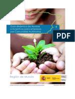 Guía dinámica de Ayudas e Incentivos para empresas - Región de Murcia
