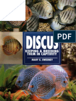 Discus Keeping & Breeding Them in Captivity
