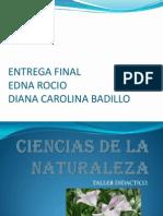 cienciasdelanaturaleza-140306185030-phpapp02