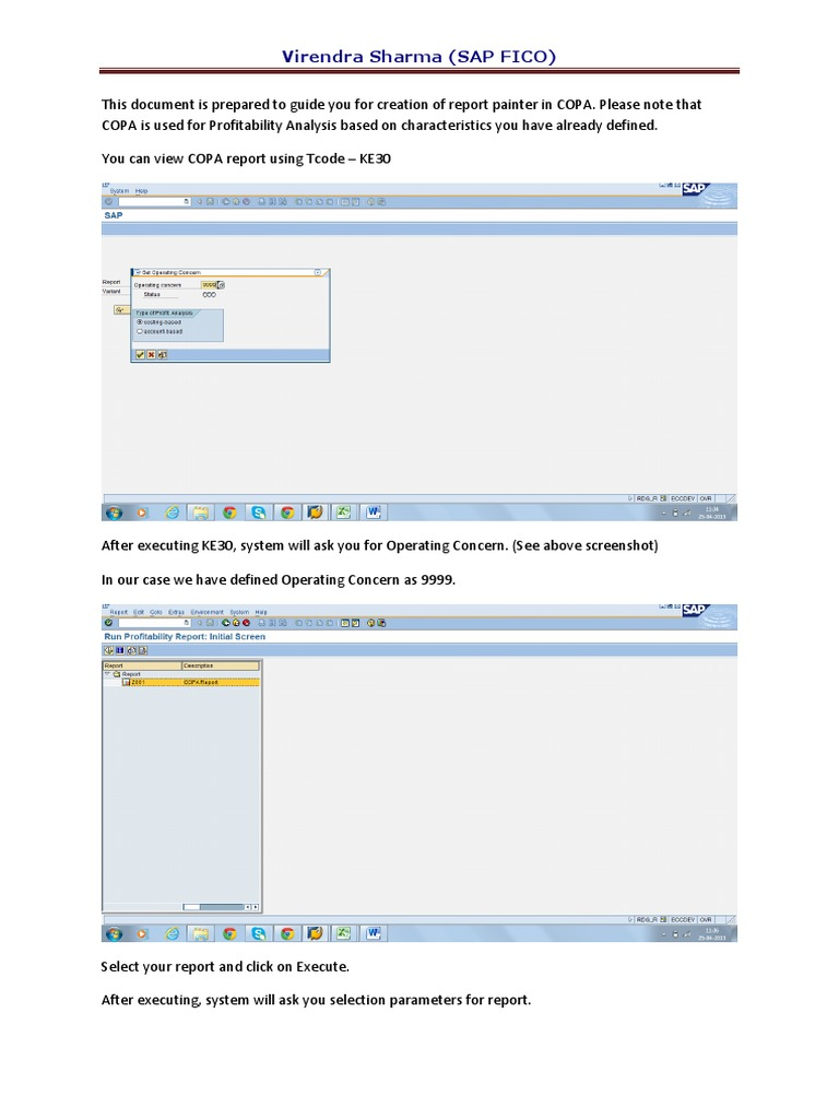 Report Painter COPA | Parameter (Computer Programming) | Profit (Accounting)