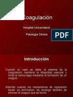 17. 10-09-08 Hematolog+¡a - Fisiolog+¡a de la Coagulaci+¦n - Dr. C+ízares