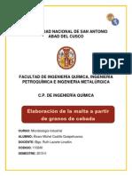 Informe de Microbiologia Industrial Elaboración de La Malta