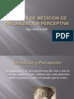 Pruebas de Medici+¦n de Organizaci+¦n Perceptiva