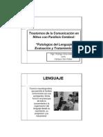 Lenguaje en PC