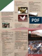 Beternak Ayam Kampung PDF