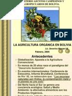 PresentacionMamaniBolivia.ppt
