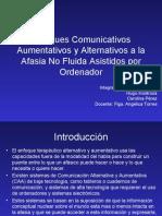 Enfoques Comunicativos Aumentativos y Alternativos a la Afasia
