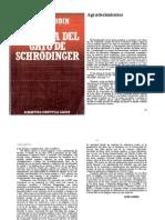 Gato Schrodinger