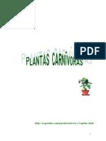 jardineria plantas carnivoras