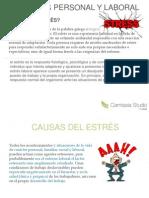 Ames Diapositiva