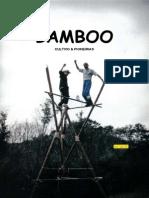 cultivo do BAMBU