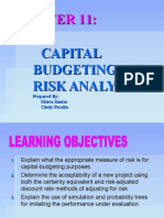 Capital Budgeting and Risk Analysis