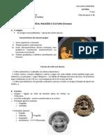 16 Fa Gréciaciareligiaocultura Resumo 7b