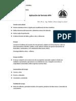 Documento, aplicaci+¦n y ejemplo de formato APA