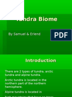 Tundra Biome[1]