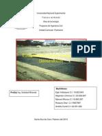 Trabajo de Estabilización de Suelos Con Geosinteticos