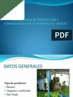 Experiencias de Producciòn y Comercializaciòn de Banano En