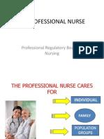 Nursing Avp Rev23nov
