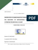 Thesis 2012 PDF
