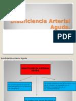 Insuficiencia Arterial Aguda