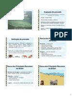 pescado3.pdf