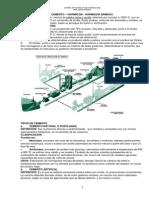 cemento.hromigon.hormigon armado.pdf