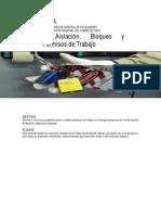 1 Guía ECF Aislación y Bloqueo_v1