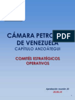 CPV Capítulo Anzoátegui - Comités Estratégicos