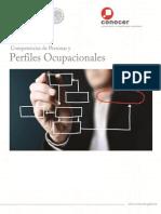 MonografiasPerfilesOcupacionalesTotales