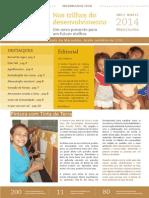 Informativo Nos Trilhos Do Desenvolvimento - Nº 3 - 13