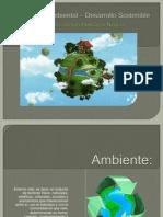 Gestion Ambiental Desarrollo Sostenible