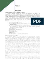 Fatouh - 5to Biologico - Modulo 1 - Organizacion de la vida
