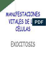 FUNCIONES DE LA CÈLULA.pdf