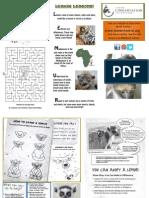 Lemur Activity for Kids!