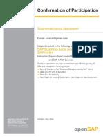 Sap Business Suite Powered by Sap Hana Participation Full 128599