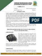 1procesos Quimicos y Fisicos de Fosilizacion