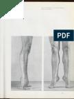 piernas y pies.pdf