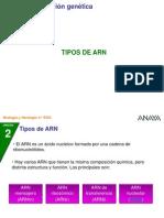 02_4BG_02_tipos_ARN.ppt