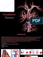 Fatouh - 3er Ano - Sistema Circulatorio Humano