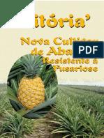 Folder Abacaxi Vitória