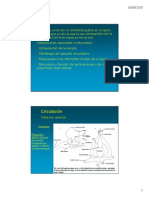 CIRCULACIÓN EN VERTEBRADOS.pdf