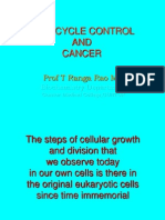 Cell Cycle Control & Cancer