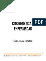 CitogeneticaEnf.pdf