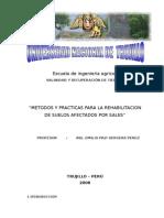 Metodos y Practicas Para La Rehabilitacion de Suelos Afectados Por Sales